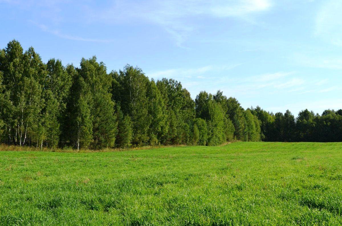 Разрешение на использование земельного участка